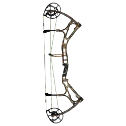 Bear Motive 6 Compoundbow