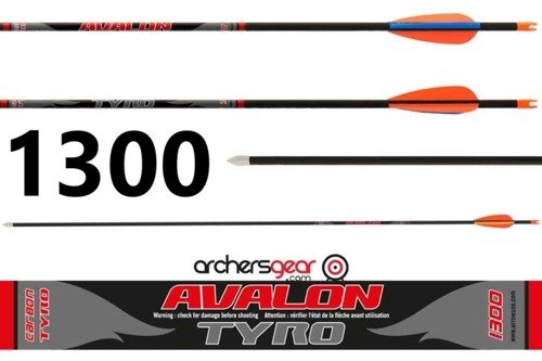 Avalon Tyro Arrow