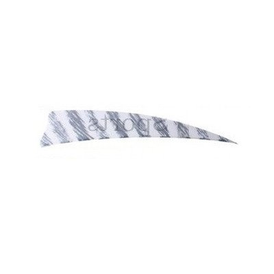 Natural Feather Gateway Shield 4'' Barred